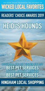 Heidi's Hounds Wicked Local Hingham Reader's Choice Awards 2019